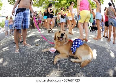 Rio de Janeiro, Brazil - January 31, 2016: Dog owners meet up along beautiful Copacabana beach to celebrate the Carnival with their animal.