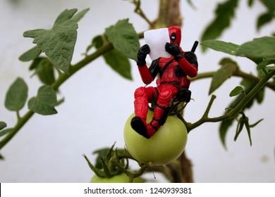 Rio de Janeiro, Brazil, November 25, 2018:  Deadpool Minifigure sitting on plant. Deadpool reading a newspaper under the plant.