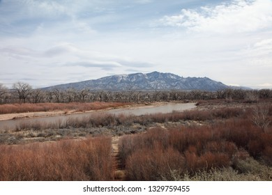Rio Grande River and the Bosque, with the Sandia Mountains in the background during wintertime, with snow capping the peaks