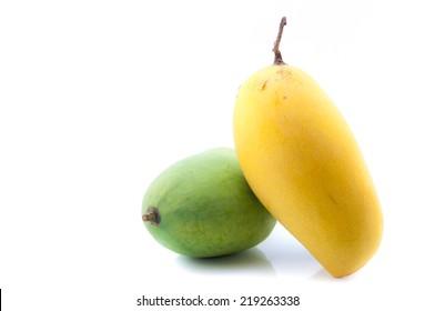 Rip and raw mango fruit of Thailand isolated on white background
