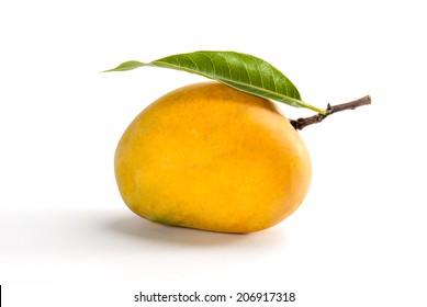 Ripe Alphonso Mango - King of fruits