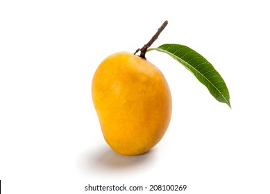 Ripe Alphonso Mango - King of fruits