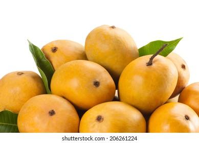 Ripe Alphonso Mangos - King of fruits