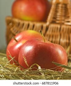 Ripe apples in basket closeup