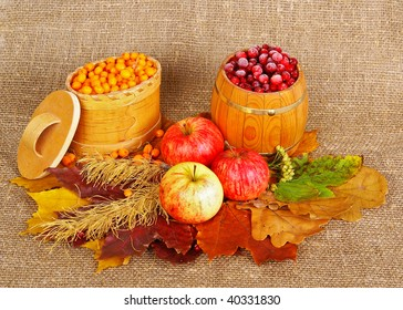 Ripe apples, frozen berry and dried leafs on canvas background