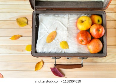 Ripe apples and knitted sweater in old suitecase on the wooden background with coloful leaves. Autumn trip. Autumn harvest. Flat lay