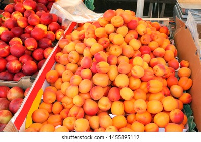 ripe apricots and peaches for sale