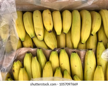 ripe bananas in a box at the store on showcase. many fresh bananas lying in boxes in supermarket