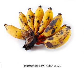 Ripe bananas (Cultivated banana) isolated on white, have a medicine properties,TNF (Tumor Necrosis Factor)