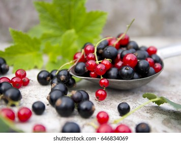 ripe black and red berry currants in the concrete background