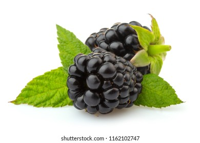 Ripe blackberries with green leaves isolated on white background