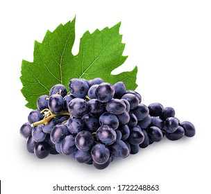Ripe bunch blue grape with leaf isolated on white background. Clipping Path. Full depth of field.