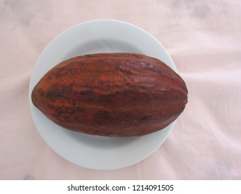 Ripe cacao on a white plate, viewed from above