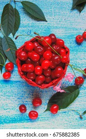 Ripe cherries in basket on old wooden table on countryside against summer foliage in sunlight