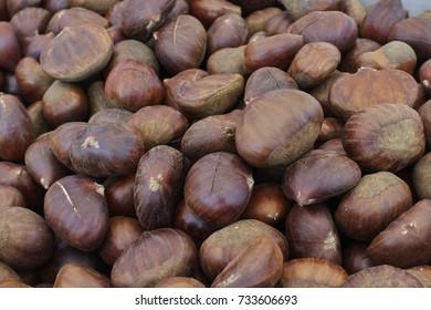ripe chestnuts in autumn