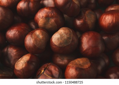 Ripe chestnuts closeup. Fresh sweet chestnut, top view. Food, autumn, fall concept.