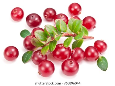 Ripe cranberries and green cranberry leaves on the white background.