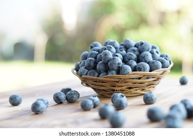 Ripe delicious blueberries close up in basket on wooden table with green blurred background