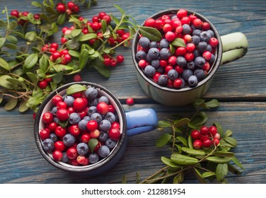 ripe forest berries - cranberries and blueberries