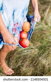 Ripe fresh apples falling of dress