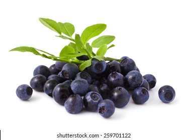 ripe fresh blueberry on a white background