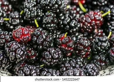Ripe and fresh fruit of black mulberry, healthy food of juicy mulberry fruit. Close-up, the texture of the berries.