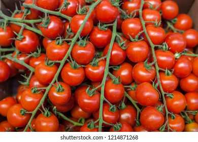 Ripe fresh red tomatoes at the farmers market