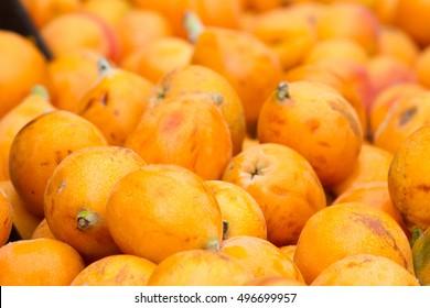 Ripe fruits of loquat. Eriobotrya japonica. Medlar background