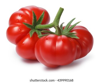 Ripe heirloom Tomatoes on vine, Togorific variety (Solanum lycopersicum). Clipping paths for both tomatoes and shadow,infinite depth of field