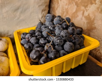 Ripe Isabella grapes in a plastic plate. Dessert fruit.