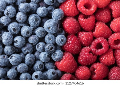 Ripe and juicy fresh picked berries closeup. Blueberries and raspberries background.