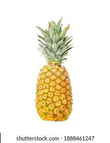 Ripe, juicy, sweet pineapple. Photo of exotic fruits. Photo