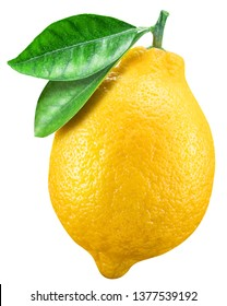 Ripe lemon fruit with lemon leaf on white background. File contains clipping path.