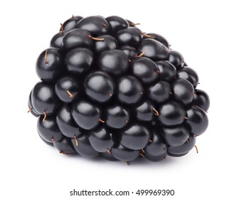 Ripe lying blackberry isolated on white background with clipping path. One of the best isolated blackberries that you have seen.