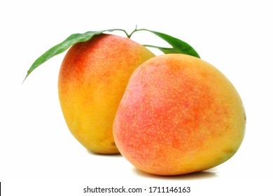 Ripe mango has green leaves on a white background.