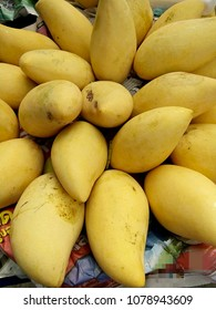 Ripe mangoes in market Chiangmai Thailand.