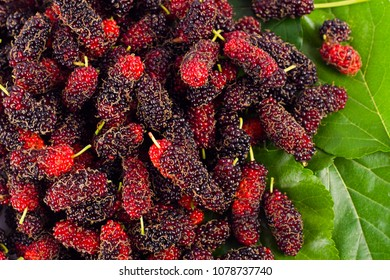 ripe mulberry fruit and green mulberry leaf  on white background healthy mulberry fruit food isolated