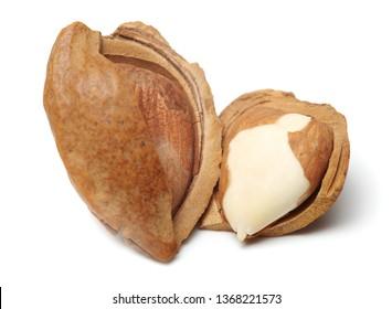 Ripe nuts apricot kernel