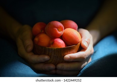 Ripe organic apricots in bowl and sunrays