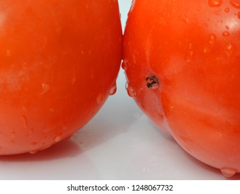 Ripe persimmons (Diospyros kaki) or Kaki fruit with water drops. White background with shadow. Reflections in the water drops.