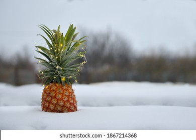 A ripe pineapple, decorated with a garland, lies on the snow. Tropical fruit lying on the snow. Fresh and juicy pineapple lying on the street in the snow. Pineapple decorated with Christmas garland