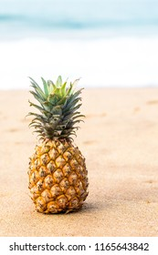Ripe pineapple on the golden sand near the ocean