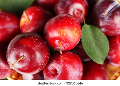 Ripe plums with green leaf, closeup