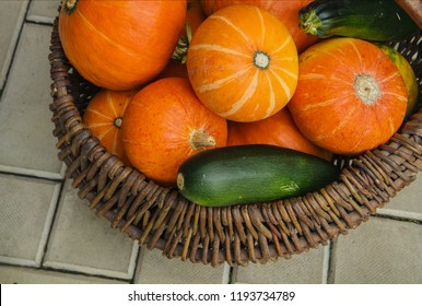 Ripe pumpkin and zucchini in wicker basket on white background. Harvest and autumn concept
