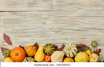 Ripe pumpkins background