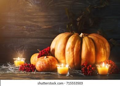 Ripe pumpkins on a wooden table. Autumn still-life. Halloween.