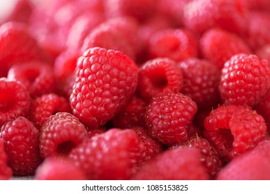 Ripe raspberries macro. Selective focus. Fruit background with copy space. Summer and berries harvest concept. Vegan, vegetarian, raw food.