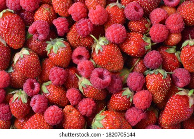 Ripe raspberries and strawberries are piled in an even layer, top view