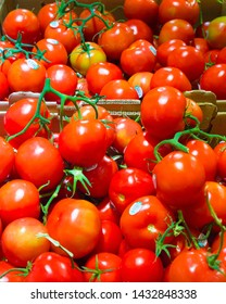 Ripe red cherry tomatoes on vine in grocery produce market