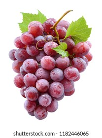 Ripe red grape with drops. grapes isolated on white. With clipping path. Full depth of field.